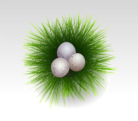 easter eggs in fresh grass illustration Illustration