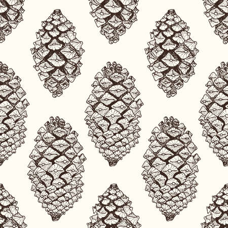 pine forest: Realistic brown pinecones seamless pattern. Vector hand-drawn illustration Illustration