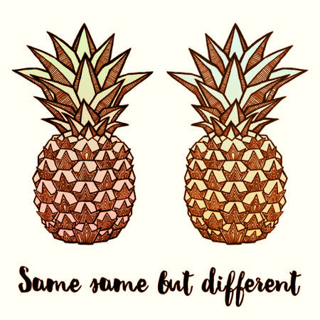 Couple of Fresh Pineapples isolated on white background. Hand-drawn ink vector illustration for t-shirts, banners, posters etc Illustration