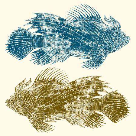 Zebra fish or Pterois volitans linocut vector illustration Illustration