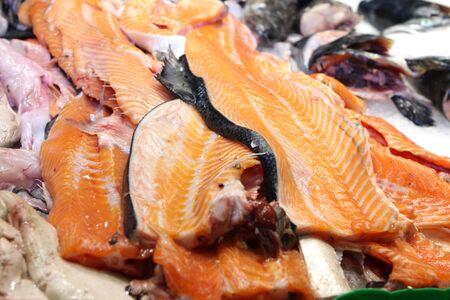 Salmon Reklamní fotografie