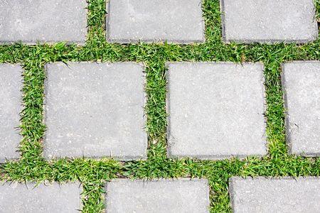 mosaic floor: Grass betreen stones