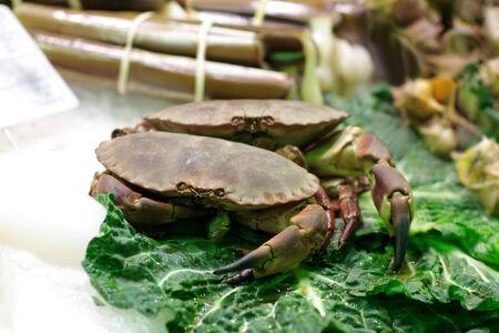 Crab Stock Photo - 8037994
