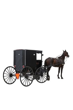 amish buggy: Amish