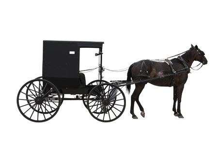 amish buggy: Amish transport