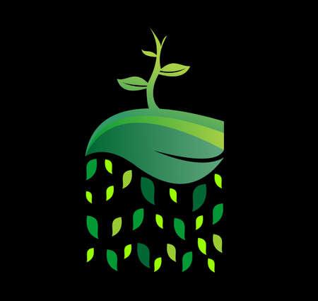 seed growing: illustration seed growing on leaf