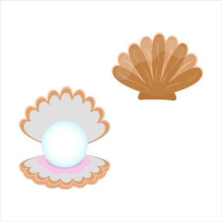 Seashell with pearl inside isolated. Vector illustration on white background.