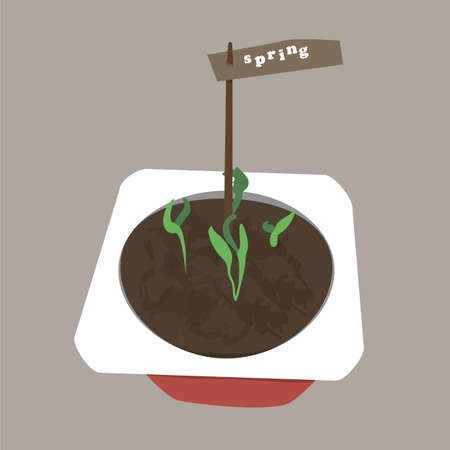 sprouting: Plants sprouting and growing in a little pot. Concept of spring coming. The beginning of life. Vector illustration of growing plants. Spring is here. Illustration
