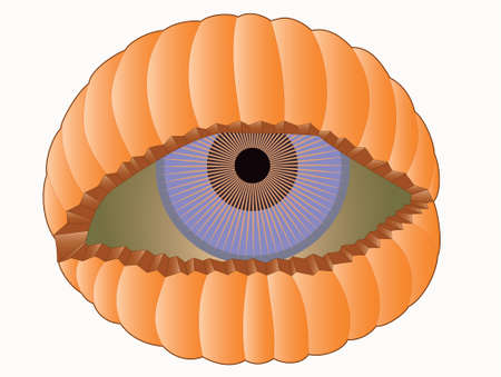 Illustration of scary eye looking out of pumpkin shell. Иллюстрация