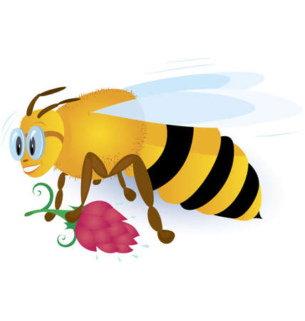 Bee with pink flower  vector illustration on   white background  Illustration