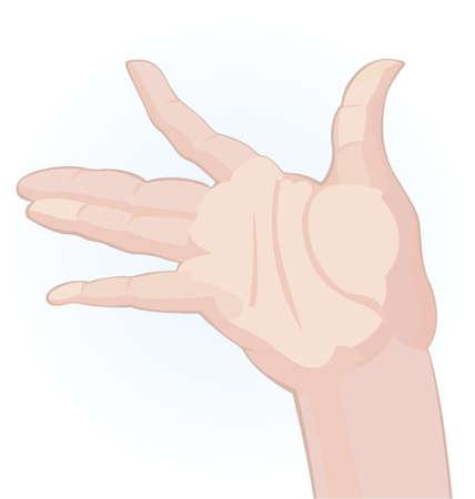 raise the thumb: Human palm on white background illustration