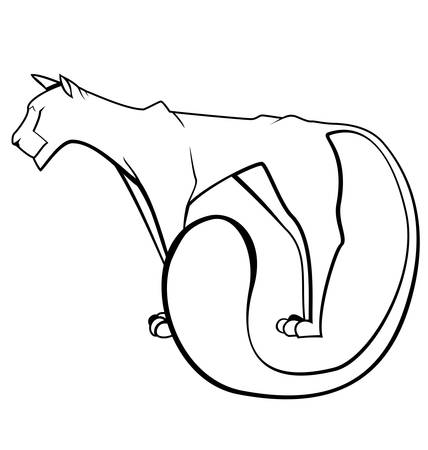 Vector illustration of black and white contour panther isolated on white Stock Vector - 16901107