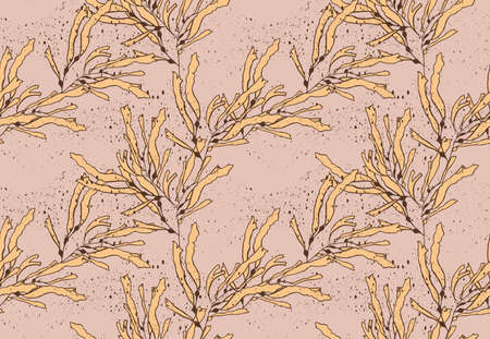kelp: Kelp seaweed yellow on texture.Hand drawn with ink seamless background.Modern hipster style design. Illustration