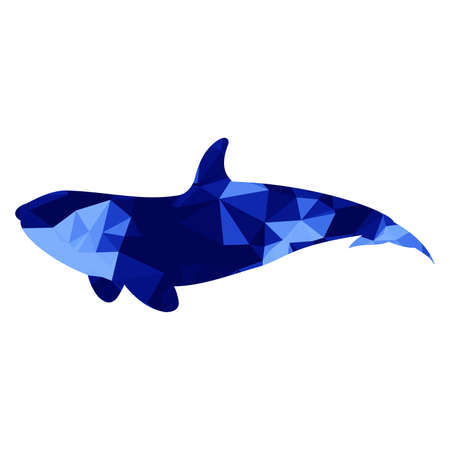 Low poly whale blue on white