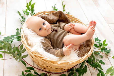 a small child a boy lies in a basket among leaves and looks at the camera 版權商用圖片