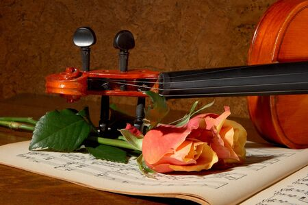 Vintage photo of a violin, music paper and two soft roses photo