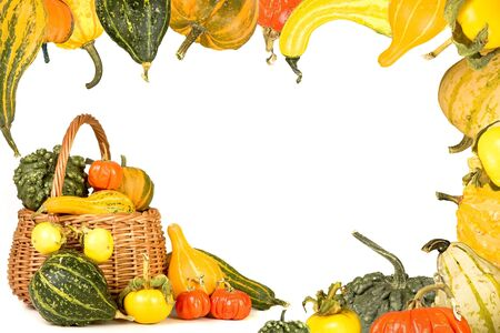 gourds: Border frame made of a thanksgiving basket and gourds Stock Photo