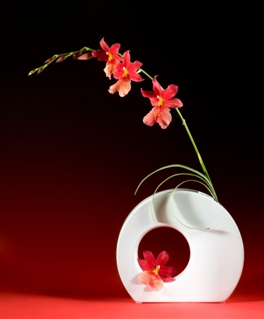 Vase with orchids in a japanese ikebana design