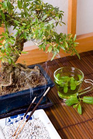 Bonsai; incense and green tea against a japanese traditional shoji window Stock Photo - 3865200