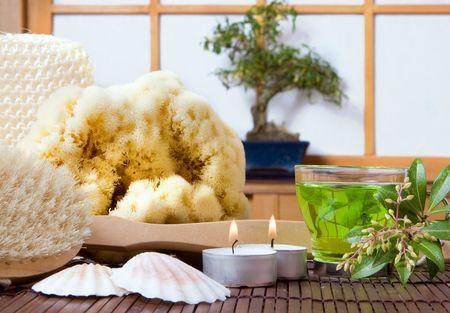 bath essence: Spa bath products, green tea and bonsai tree against a traditional japanese shoji sliding window Stock Photo