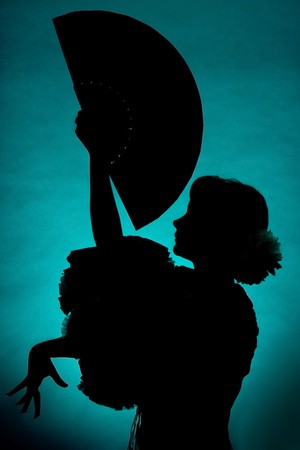 Silhouette of a Spanish flamenco dancer with fan Stock Photo - 3975650