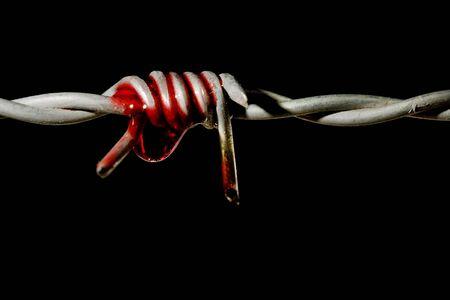 fil de fer: Du sang sur un pic de fil de fer barbelé, symbole de la torture et la liberté