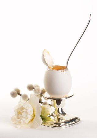 White egg on a silver holder, with a silver spoon, camelia flower and catkins photo