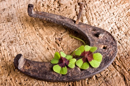goodluck: Vintage symbol of luck : rusty horse-shoe and clover