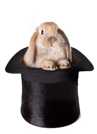 Little easter bunny as a surprise in a top hat Stock Photo