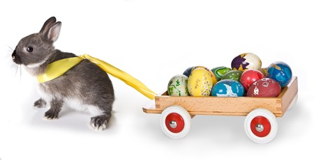 bunnie: Little gray easter bunny pulling a cart filled with easter eggs Stock Photo