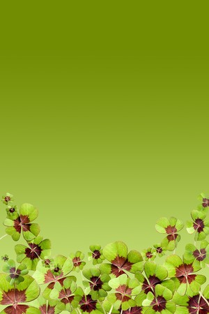 goodluck: Green background page filled with lucky four leaf clover Stock Photo