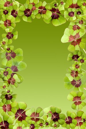 Frame of lucky four leaf clovers on a green background Stock Photo - 4287460