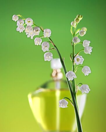 muguet: Bottle of perfume and two twigs of lilies-of-the-valley