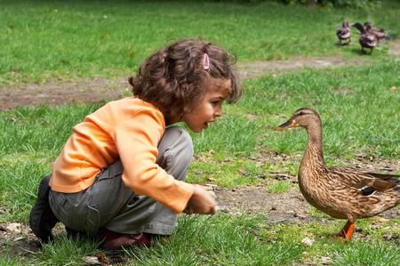Little girl feeding the ducks in the park photo