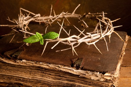 resurrection: Easter image with Crown of thorns and green leaf of hope