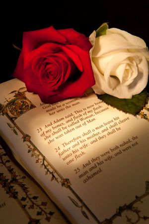 Genesis text of Adam and Eve in a bible with roses - the text illustration is copied from a 400 years old bible. Stock Illustration - 4722848