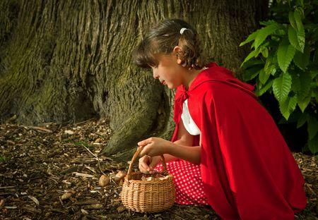 czerwony kapturek: Czerwony Kapturek zbieranie grzybów lub grzybów w lesie