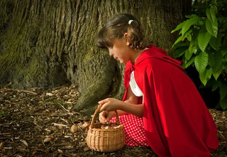 little red riding hood: Little red riding hood picking mushrooms or fungi in the forest Stock Photo