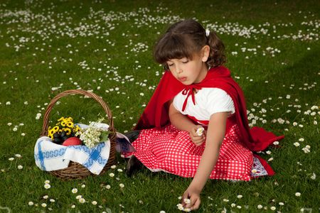 Little red riding hood picking daisies in the grass Stock Photo - 4864475