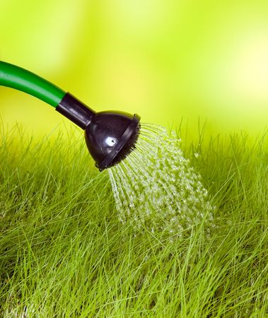 Plastic watering can used to water the grass Stock Photo - 4944349