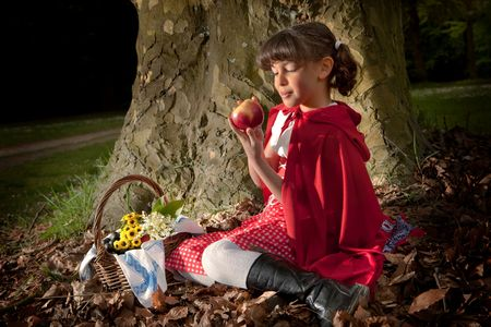 Little red riding hood sitting on a tree trunk in the forest Stock Photo - 4940378