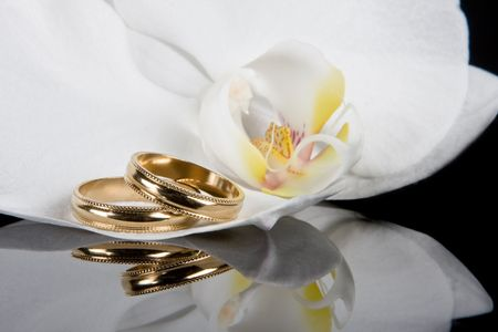 Wedding rings lying on white orchid flowers