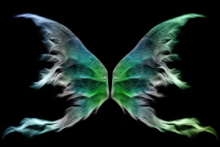 fantasy fairy: Set of colorful fairy wings isolated on black Stock Photo