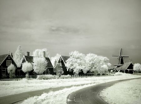 infra red: Infrared photo of Dutch houses, trees and a windmill
