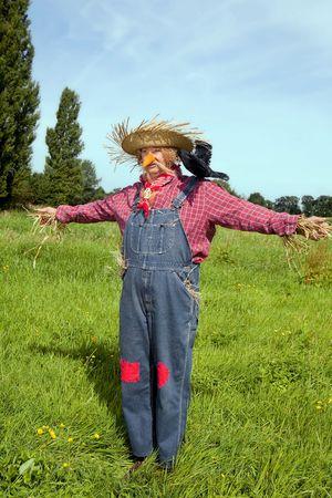 scarecrow: Agricultor act�a como un espantap�jaros que viven con un negro cuervo sobre el hombro