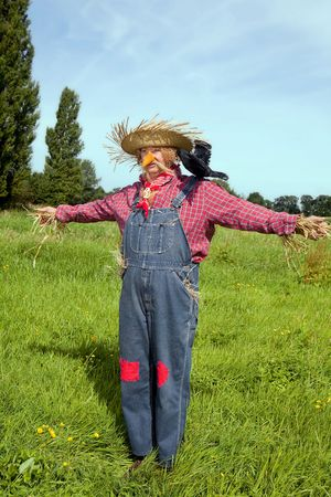 scare: Farmer acting as a living scarecrow with a black crow on his shoulder