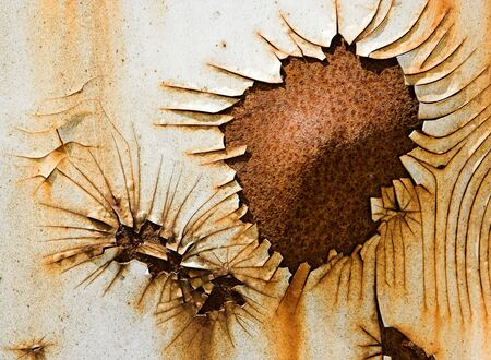 Flower-shaped rust on the side of a steel container photo