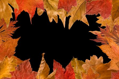 Border frame made of autumn leaves in full color photo