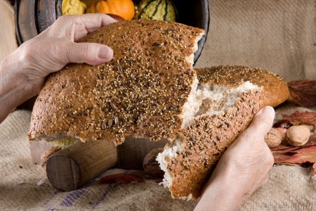 sharing food: Old hands sharing bread at a thanksgiving table, filled with autumn products