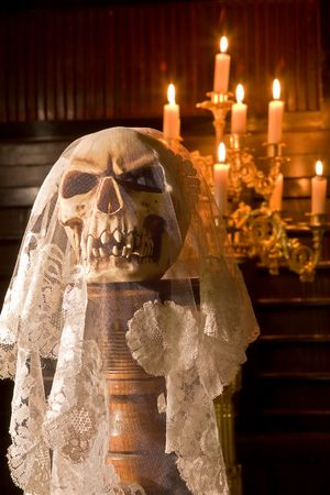 Death skull wearing the wedding veil of a bride photo